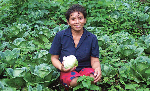 A woman sits in a field of cabbage.